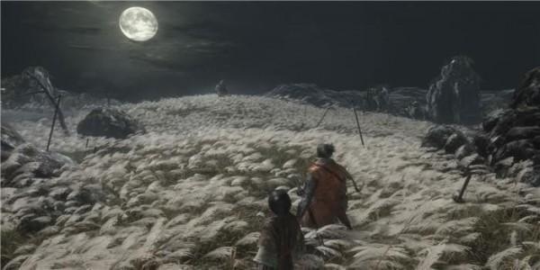 只狼-第3张图片-cc下载站