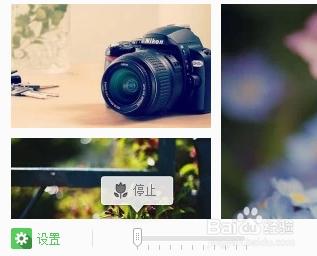 搜狗壁纸 2.5.4.2687 官方版-第14张图片-cc下载站