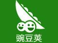 豌豆荚 5.21.1.12053