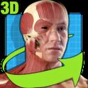 轻松人体解剖:Easy Anatomy 3D 4