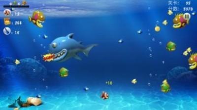 大鱼吃小鱼-第2张图片-cc下载站
