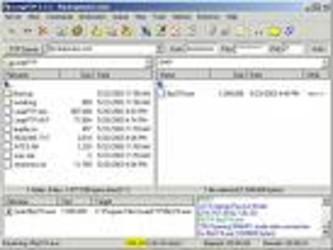 LeapFTP 3.1.0-第6张图片-cc下载站