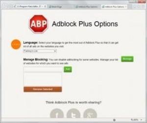AdBlock Plus for ie(32位) 2.5-第2张图片-cc下载站