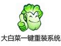 大白菜一键重装系统 7.0.10