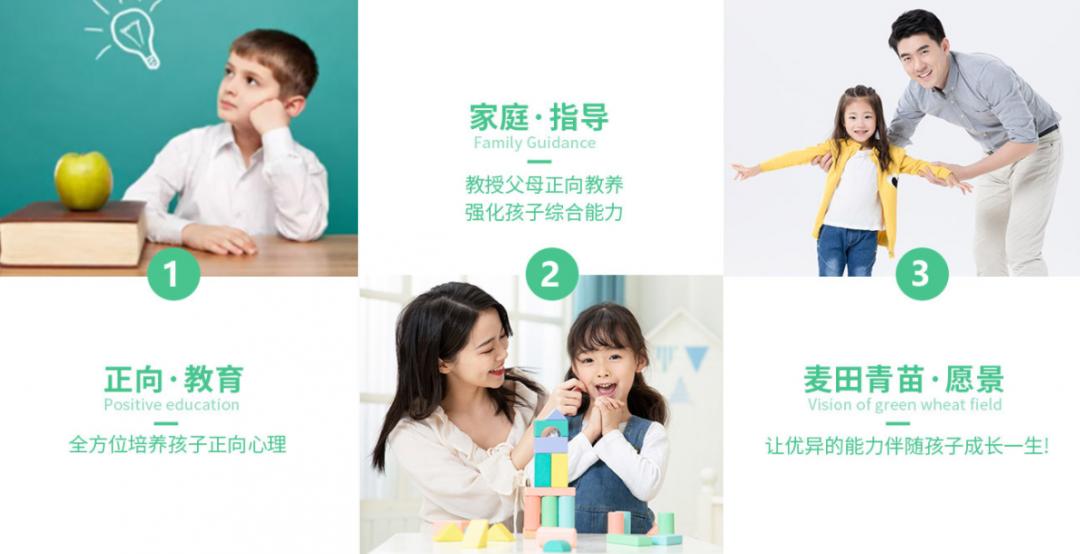 成都麦田青苗儿童语言障碍训练-第3张图片-cc下载站